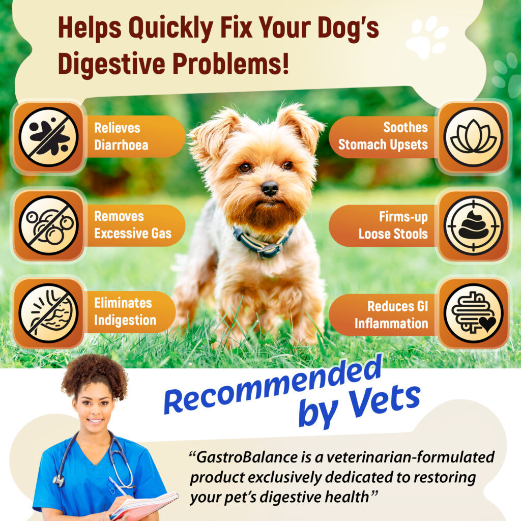 Diarrhoea-GastroBalance-benefits-5060859290002